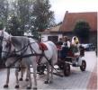 Zdjęcie 1 - Wesele w Kryst-Tad Gutkowo koło Olsztyna