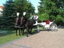 Zdjęcie 2 - Kareta do Ślubu...