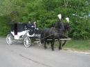 Zdjęcie 3 - Kareta do Ślubu...
