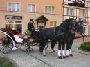 Zdjęcie 2 - Bryczka do Ślubu - Chojnice