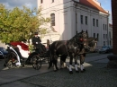 Zdjęcie 4 - Bryczka do Ślubu - Chojnice