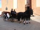 Zdjęcie 6 - Bryczka do Ślubu - Chojnice