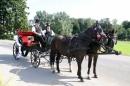 Zdjęcie 7 - Bryczka do Ślubu - Chojnice