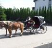 Zdjęcie 9 - Bryczka do Ślubu - Chojnice