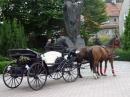 Zdjęcie 8 - Bryczka na Ślub - Wrocław