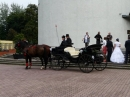 Zdjęcie 13 - Bryczka na Ślub - Wrocław