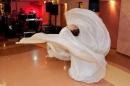 Zdjęcie 2 - Taniec ze skrzydłami - atrakcja na wesele Kraków