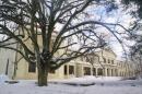 Zdjęcie 2 - Pałac Grąbkowo