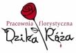 LOGO - Pracownia Florystyczna Dzika Róża Tarnowskie Góry