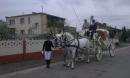 Zdjęcie 4 - Bryczka do ŚLUBU - Małachowo - wielkopolskie
