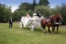 Zdjęcie 4 - kareta, bryczka do ślubu