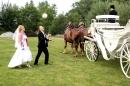 Zdjęcie 6 - kareta, bryczka do ślubu