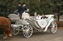Zdjęcie 7 - kareta, bryczka do ślubu