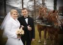 Zdjęcie 10 - kareta, bryczka do ślubu