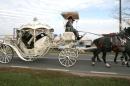 Zdjęcie 5 - Hiszpańskim Zaprzęgiem do Ślubu