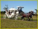 Zdjęcie 12 - Hiszpańskim Zaprzęgiem do Ślubu