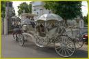 Zdjęcie 15 - Hiszpańskim Zaprzęgiem do Ślubu